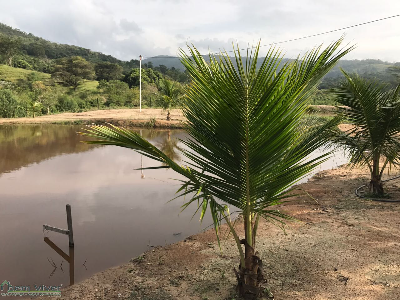 Fazenda - FAZENDINHA 21HA TORNEIROS MG | cod.: 212322 R$ 850.000,00