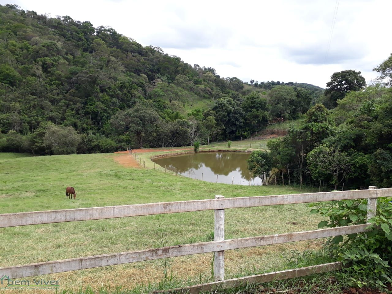 Fazenda - SITIO HARAS ESPETACULAR | cod.: 212542 R$ 1.300.000,00