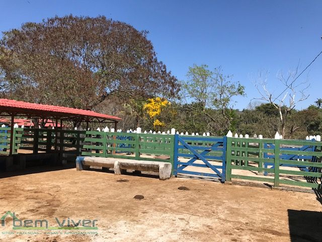 Fazenda - Fazendinha Haras Florestal   cod.: 212610 R$ 2.200.000,00