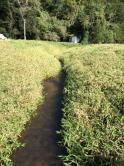 Fazenda - Zona Rural - Santana Dos Montes - R$  2.000.000,00
