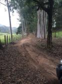 Fazenda - Zona Rural - Conselheiro Lafaiete - R$  3.000.000,00