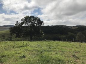 Sítio   Zona Rural (Conselheiro Lafaiete)   R$  450.000,00