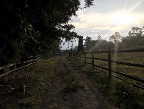 Sítio   Zona Rural (Conselheiro Lafaiete)   R$  490.000,00