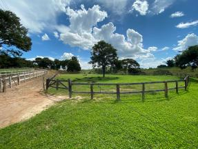 Haras   Zona Rural (Conselheiro Lafaiete)   R$  690.000,00