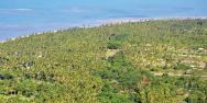 Lotes em Condomínio - Guaiú Eco-Village R$ 392.000,00