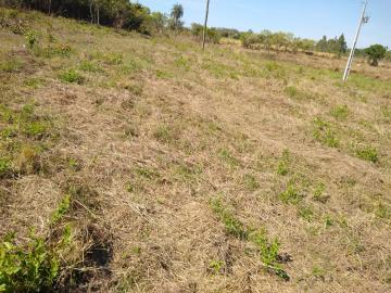 Fazendinha   Alenqueijo (Esmeraldas)   R$  250.000,00