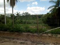 Chácara   Campo Alegre (Contagem)   R$  118.000,00