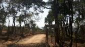 Chácara - Zona Rural - Bonfim - R$  50.000,00
