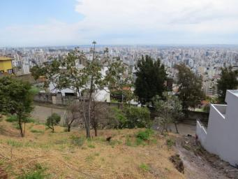 Lote   Mangabeiras (Belo Horizonte)   R$  468.000,00