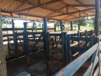 Fazenda   Zona Rural (Papagaios)   R$  1.400.000,00