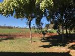 Fazenda   Zona Rural (Paraopeba)   R$  3.500.000,00