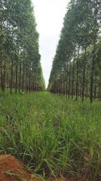 Fazenda   Zona Rural (Curvelo)   R$  3.500.000,00