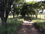 Fazenda   Zona Rural (Paraopeba)   R$  1.160.000,00