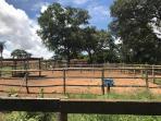 Fazenda   Zona Rural (Paraopeba)   R$  800.000,00