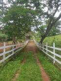 Fazendinha - Fazendinha 16ha PX CAPOEIRA GRANDE | cod.: 212510 R$ 900.000,00
