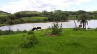 Fazenda   Centro (Santa Luzia)   R$  4.500.000,00