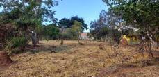 Lote   Zona Rural (Igarapé)   R$  180.000,00