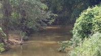 Fazenda   Zona Rural (Jequitibá)   R$  1.300.000,00