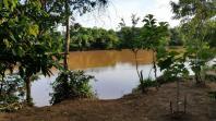 Sítio   Zona Rural (Martinho Campos)   R$  280.000,00