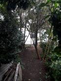 Terreno / Área - Centro - Poços De Caldas - R$  1.200.000,00
