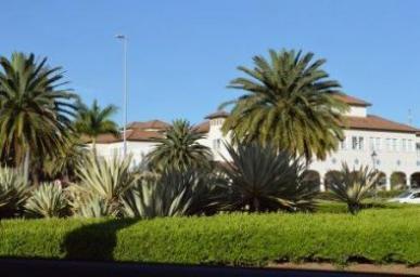 Lote   Alphaville - Lagoa Dos Ingleses (Nova Lima)   R$  580.000,00