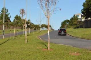 Lote   Alphaville - Lagoa Dos Ingleses (Nova Lima)   R$  495.000,00